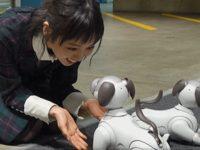 【欅坂まとめ】これからもaiboが色々なところに遊びに行くのでお楽しみに🐶